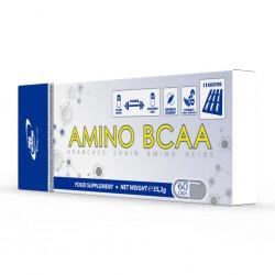 AMINO BCAA 60 CAPS PRO NUTRITION 55,2G