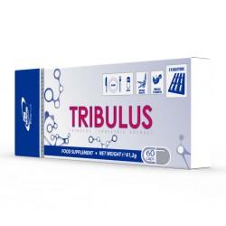 TRIBULUS 60 CAPS PRO NUTRITION 61.2 G