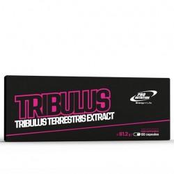 Tribulus, 60 caps, Pro Nutrition